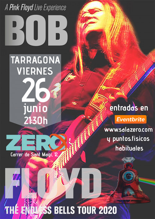 A Pink Floyd Live Experience, Banda tributo a Pink Floyd